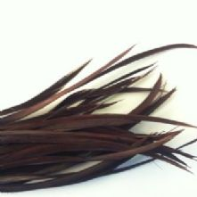 Chocolate Goose Biot Feathers